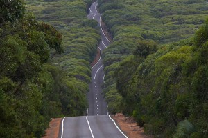 Lacets-39-Kangaroo Island road in Flinders Chase National Park, Australia