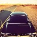 Mustang_Desert