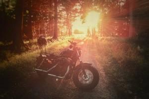Virage8_Harley 48